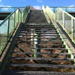 Prevention for stairway accidents